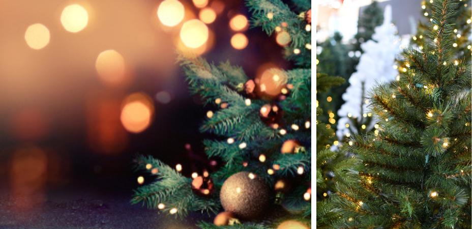 Clusterverlichting voor in de kerstboom of in huis kopen? | Kom naar Tuincentrum De Boet | DeBoet.nl