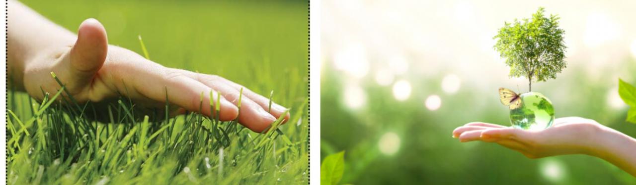 Duurzaamheid bij Tuincentrum De Boet
