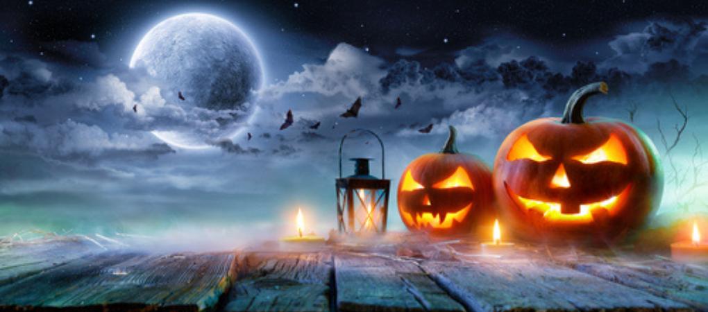 Alles Voor Halloween.Halloween Figuren Kopen Tuincentrum De Boet