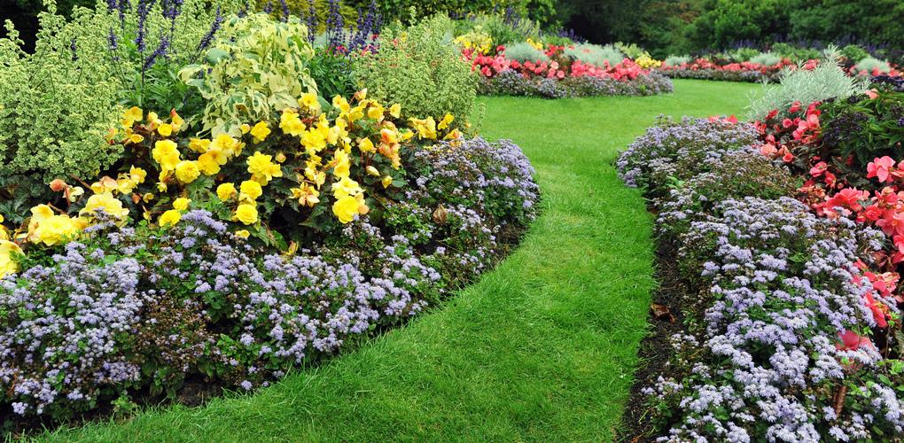 Tuinplanten | Ga de tuin in! | Kom naar tuincentrum De Boet | DeBoet.nl