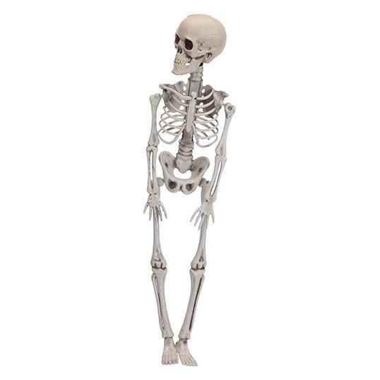 Skelet Voor Halloween.Halloween Skelet 42 Cm